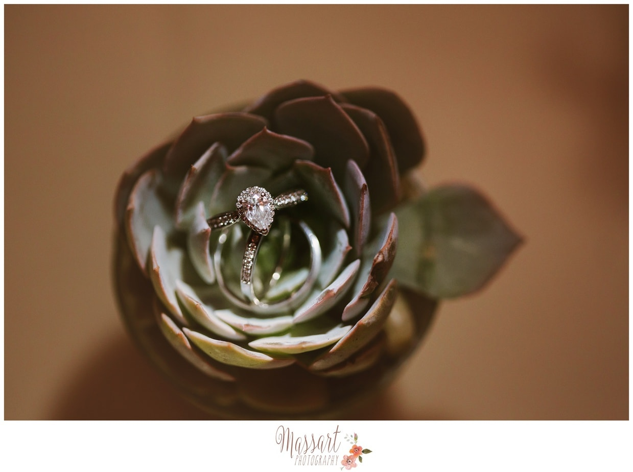 succulent ring shot creative lighting ri