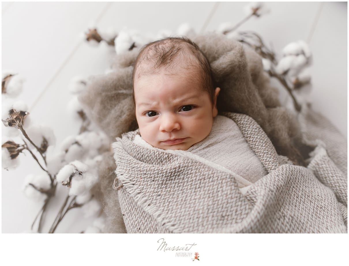 portraits of a newborn photographed in studio by Massart Photography of Rhode Island