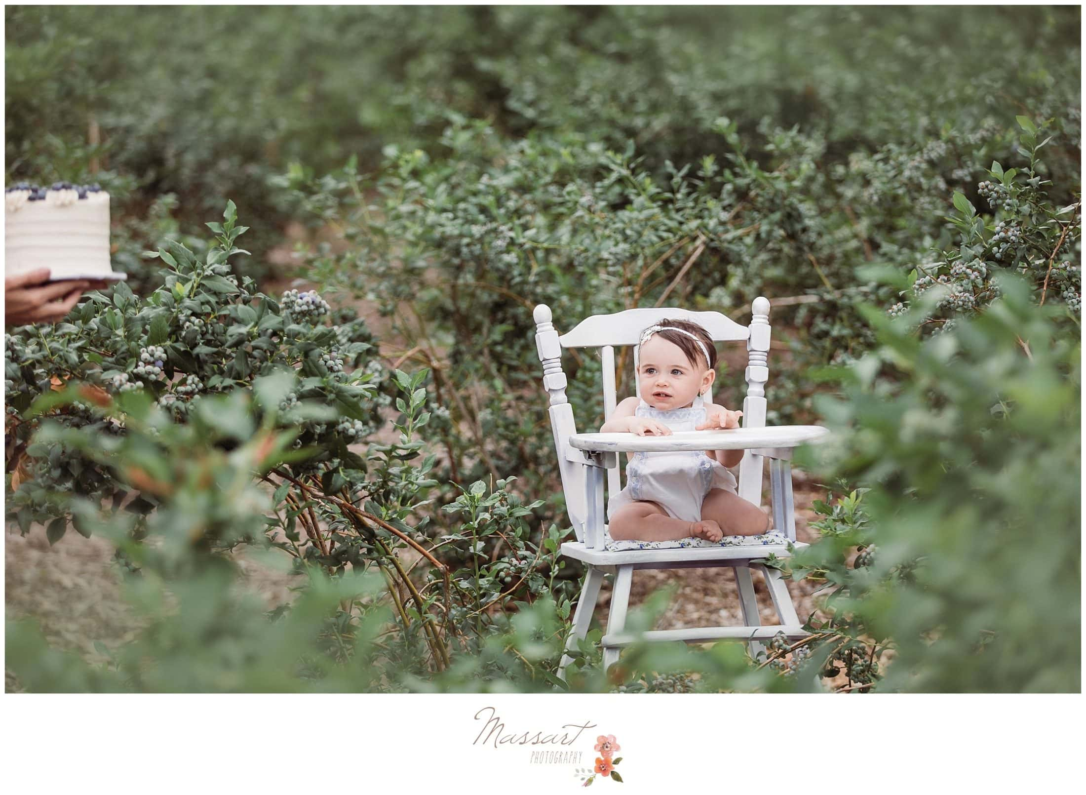 Baby girl in a high chair at the blueberry farm during her cake smash session photographed by Massart Photography RI