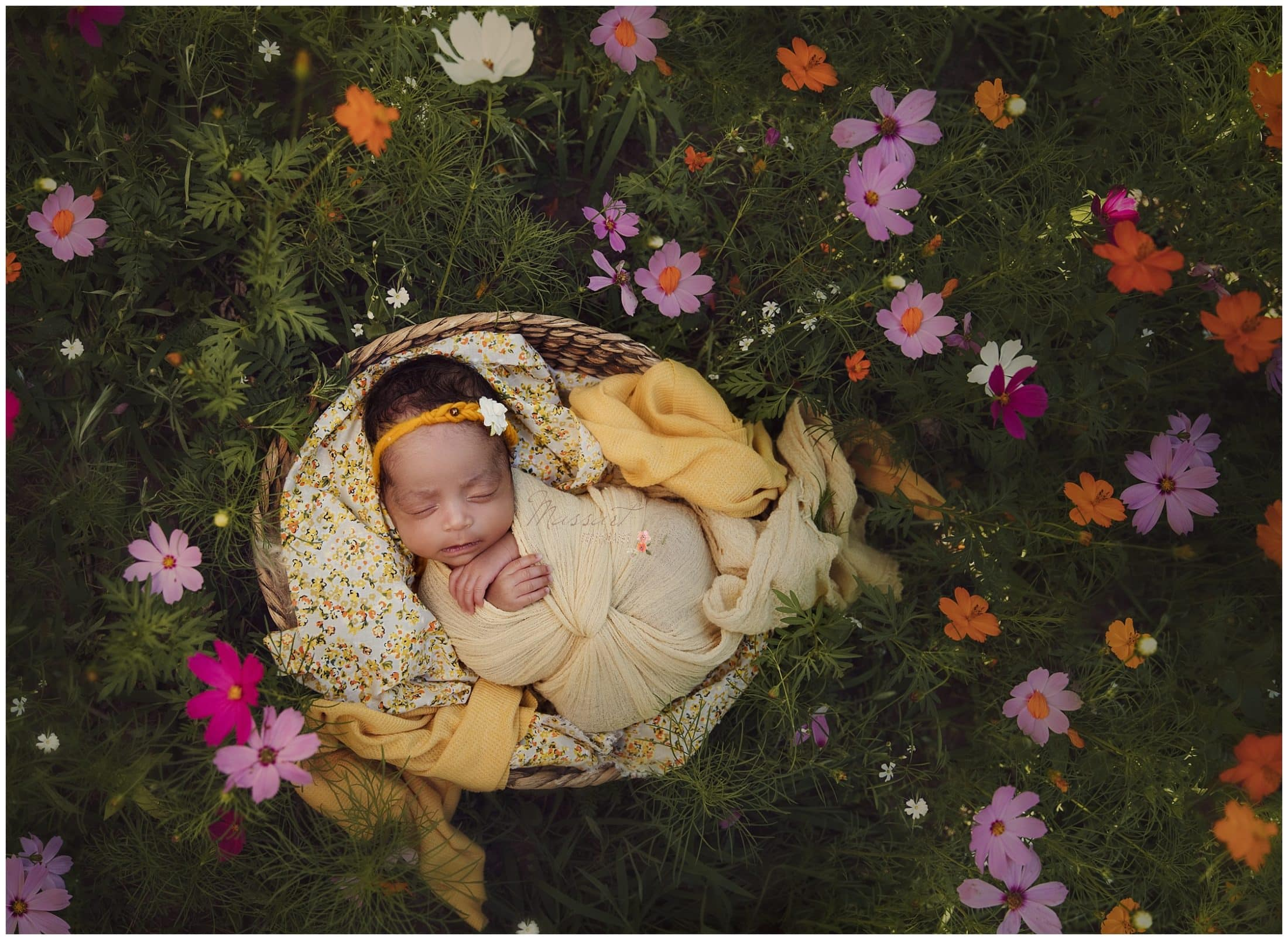 Baby girl in basket surrounded by colorful flowers during newborn session photographed by Massart Photography Rhode Island
