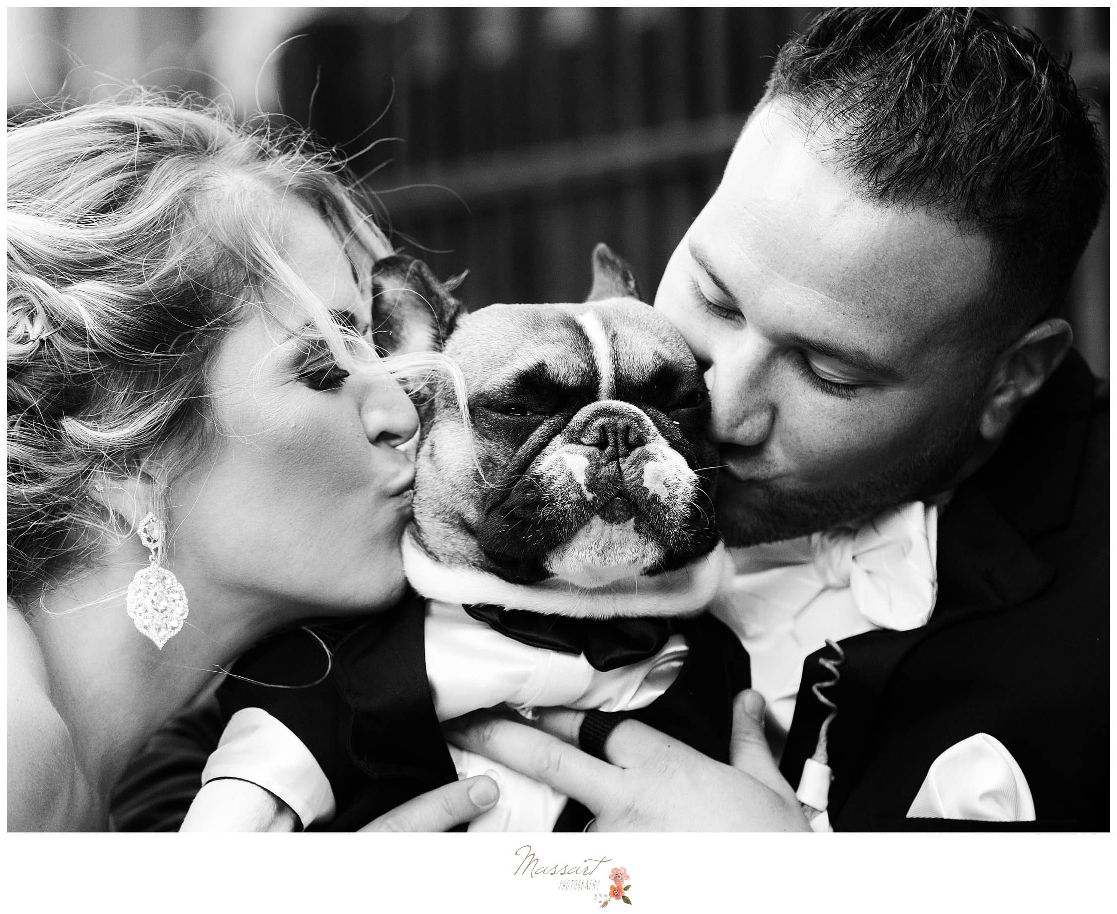 Black and white portrait of the bride, groom, and their pup photographed by Massart Photography RI
