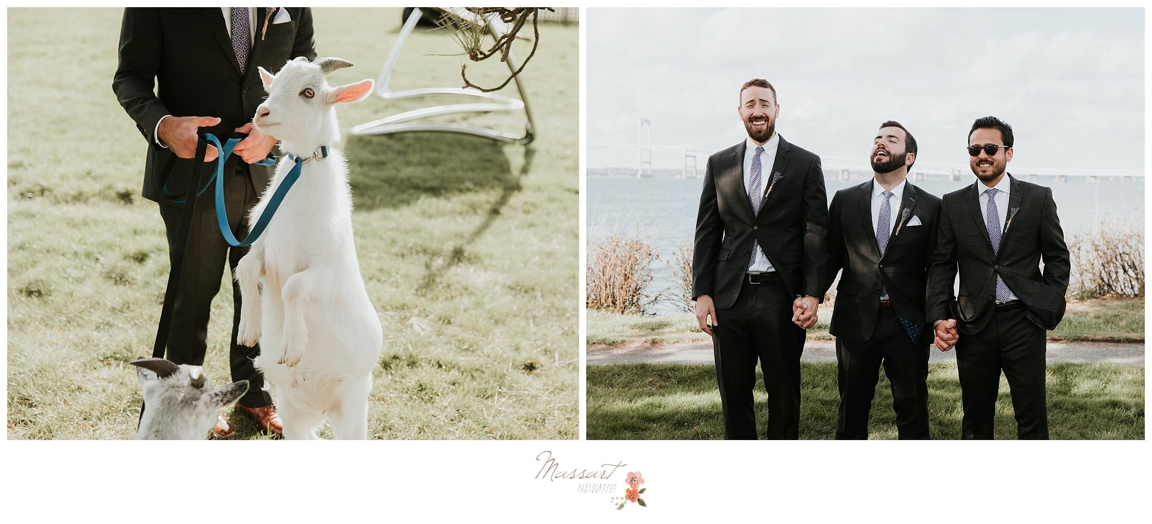 Portraits of the groom, groomsmen and the goats from the island photographed by Massart Photography RI