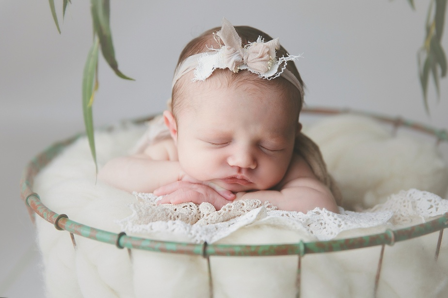 RI MA CT newborn photographer baby girl newborn session pale florals and greenery
