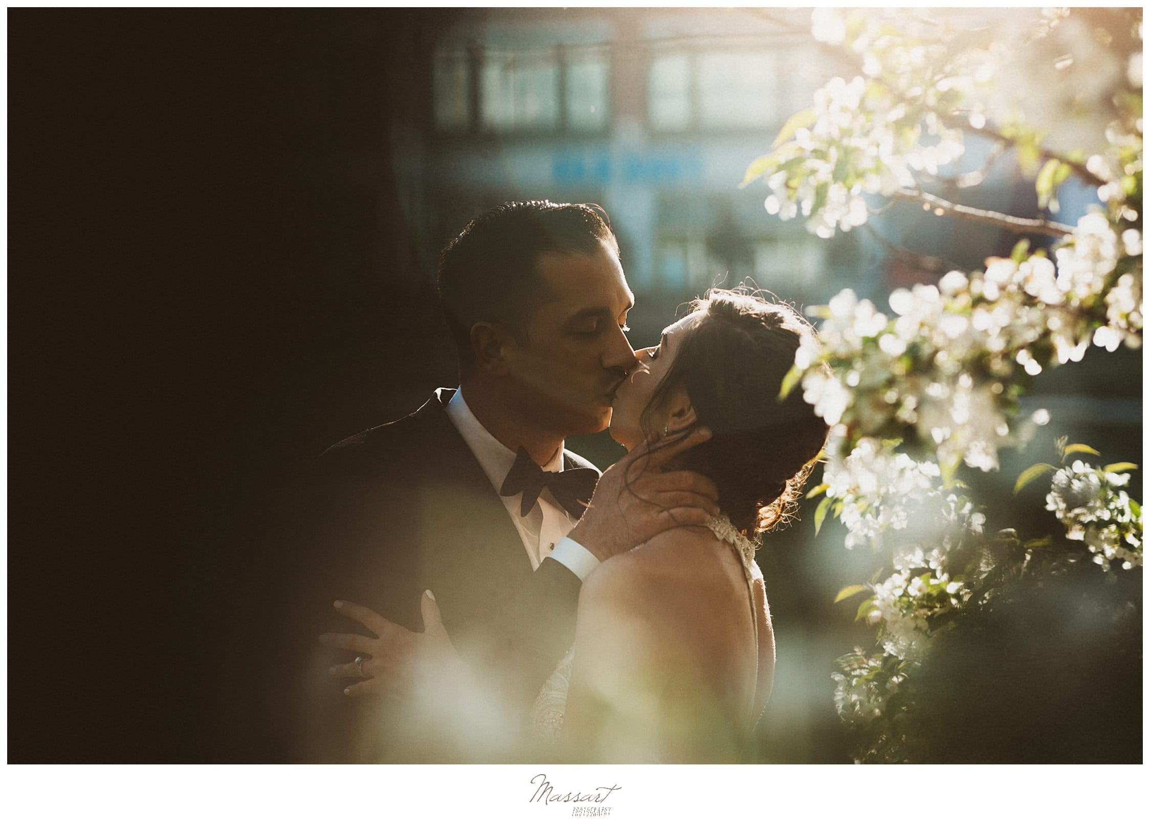 romantic wedding portraits by wedding photographers Massart Photography