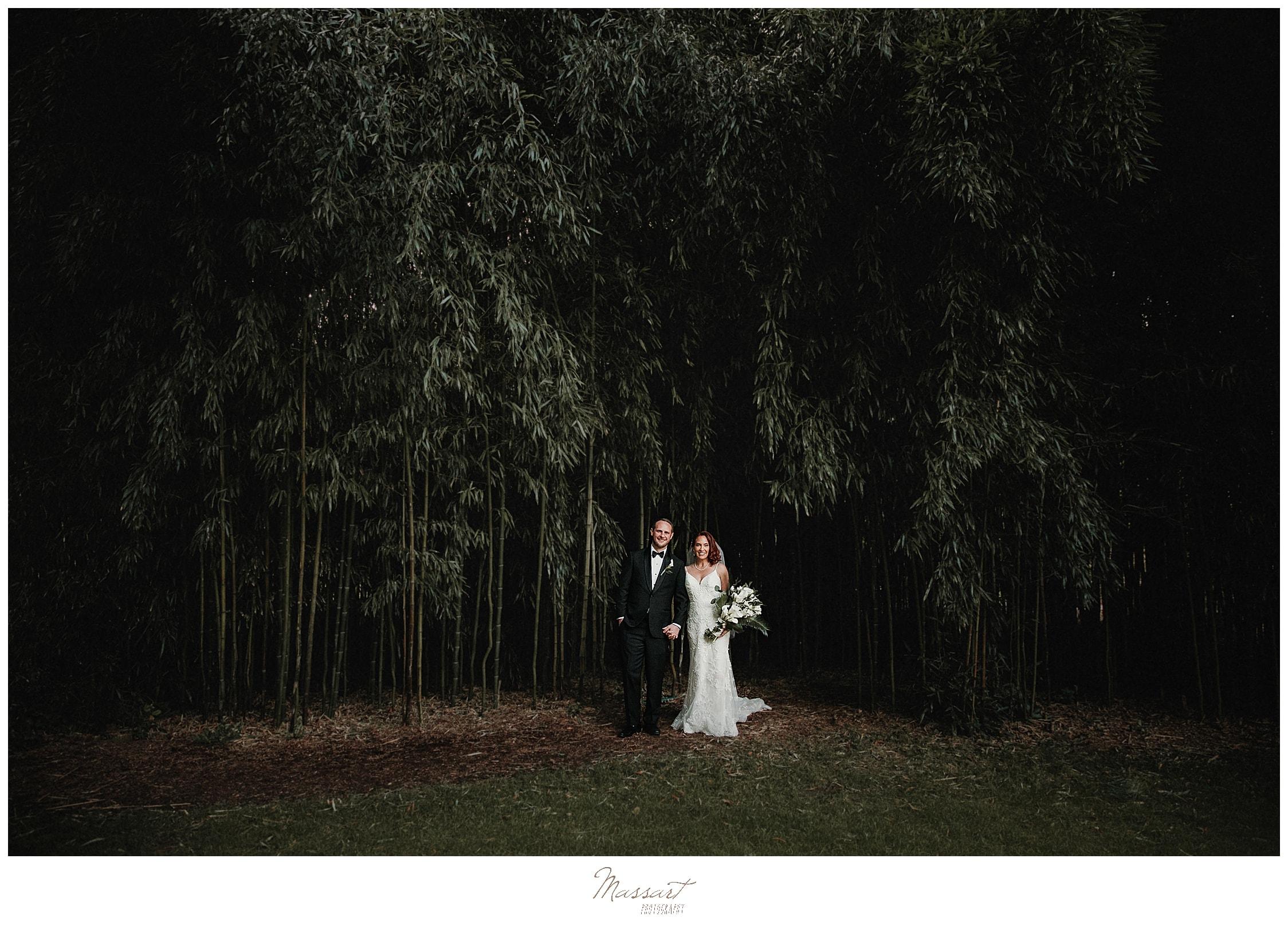 blithewold mansion bamboo garden